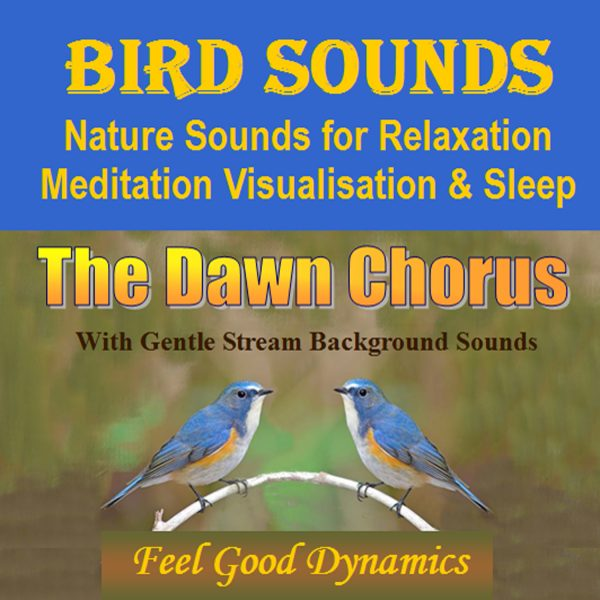 The Dqwn Chorus